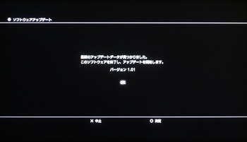 P11306541s