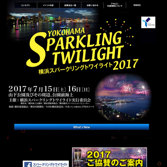 Sparkling_fireworks_2017