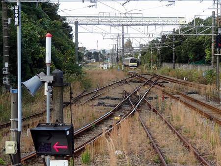 Dsc00832001